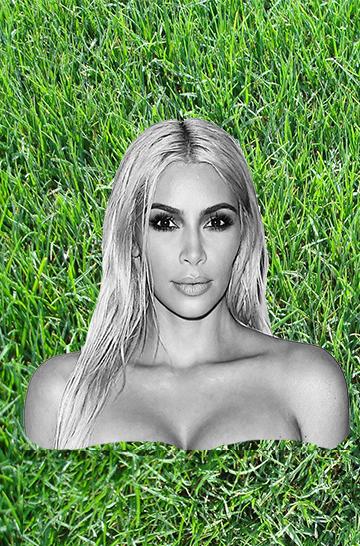 Suburban lawns and Kim Kardashian: a comparison.